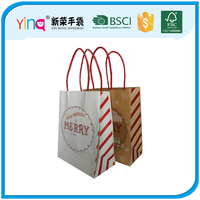 China supplier cheap wholesale christmas kraft paper bag