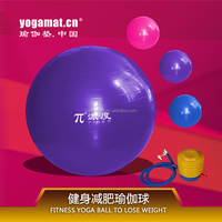 Eco Fitness Exercise Ball With Pump
