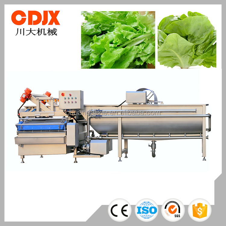 High capacity energy saving vegetable washing machine for sale