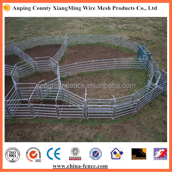hot sale popular used cattle / sheep / horse yard