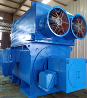 1600kw 3.3kv high voltage electric motor