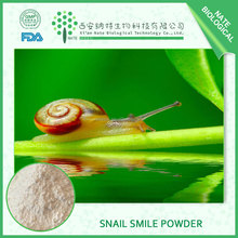 Hot Sale Natural Snail Extract Powder 65%