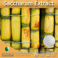 Pure Natural Saccharum Extract ( 90-95% Policosanol, 60% Octacosanol )
