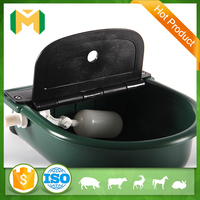 Pig cattle cow horse drinking water bowl