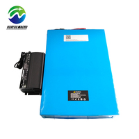 Custom Lithium Ion Battery Replace 12V 200Ah Deep Cycle Agm Gel Vrla Lead Acid Solar Battery
