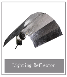 6 light reflector.jpg