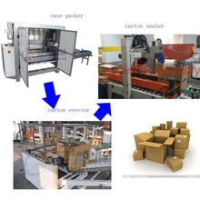 Automatic Carton Sealer Packing Line