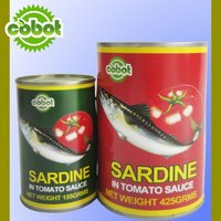 canned fish sardines