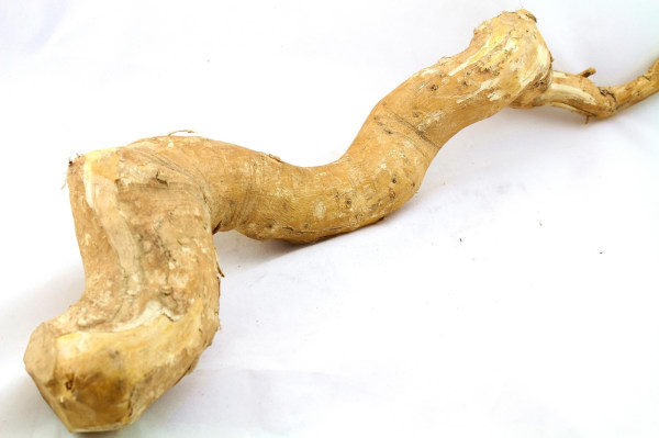 100% natural Tongkat Ali root Extract in penis strong medicine for long time sex