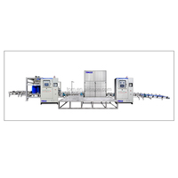 High ratio reliable latest designed low position palletizer for food package