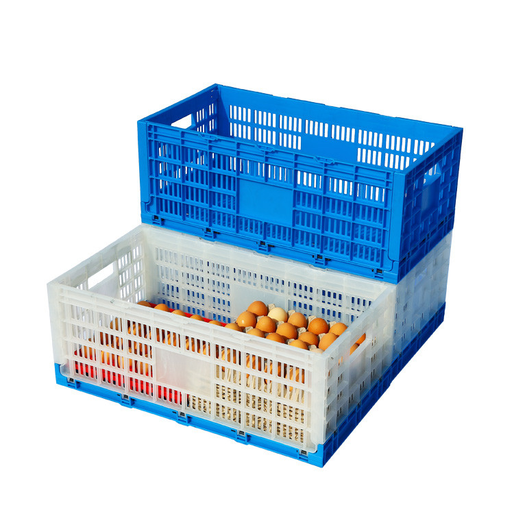 Egg Packing Use Foldable Plastic Storage Crates For Transport