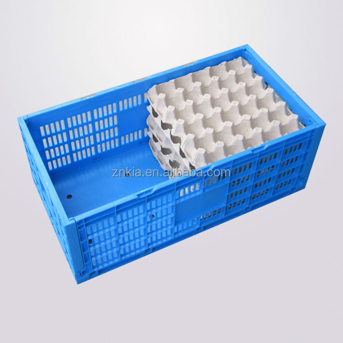 collapsible/folding duck Egg Storage Crate/Box/Container