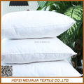 Quality cushion inners filling feathers wholesale