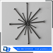 "1""-6"" Polished Common Nail/Common Round Wire Nail Price/Iron Nails Linyi"