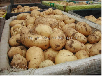 2017 new crop fresh potato,Chinese potato.