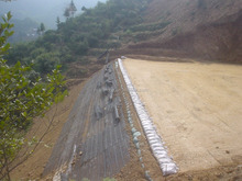 PP/PE Uniaxial /Biaxial plastic Geogrid price geogrid harga geogrid