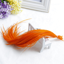 Hot Selling Cheap Grizzly Rooster Feather Extension Rooster Tail Feathers