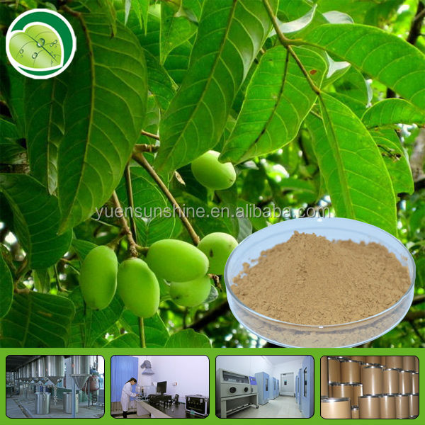 High quality oliver leaf extract