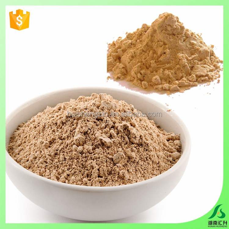 Bulk organic brown at wholesale price rice protein powder