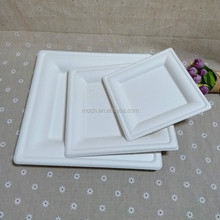 Party Biodegradable Dinnerware Sugarcane Disposable Square Plate