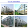 The Large Span Agricultural Glass Greenhouse