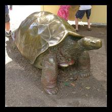 high quality bronze turtle sculptures fountain