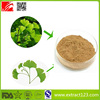 Factory Direct Supply ginkgo biloba extract