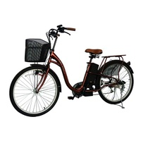 Cheap Adult Kawasaki Electric Bike