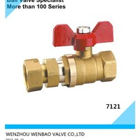 Female Threaded Expansion Brass Ball Valve