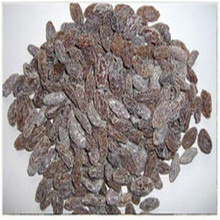 supply cheap dried fruit,dried raisin from China