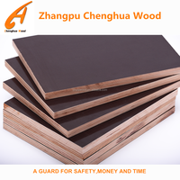 Building Construction Material Eucalyptus Shuttering Ply