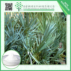 Health Product Natural Saw Palmetto Extract