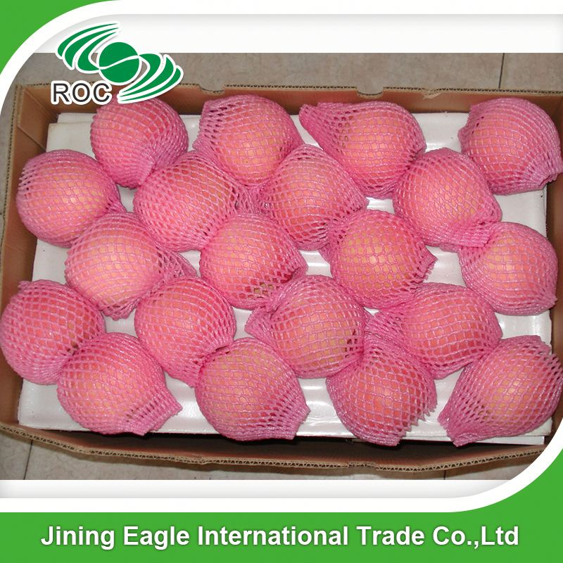 Chinese supply bulk fresh sweet royal gala apple fruit