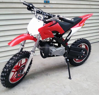 Mini Dirt Bike 50cc with Electric StartTires for Kids