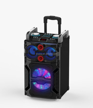 cheap protable battery powered trolley speaker with USB/SD/FM/BT