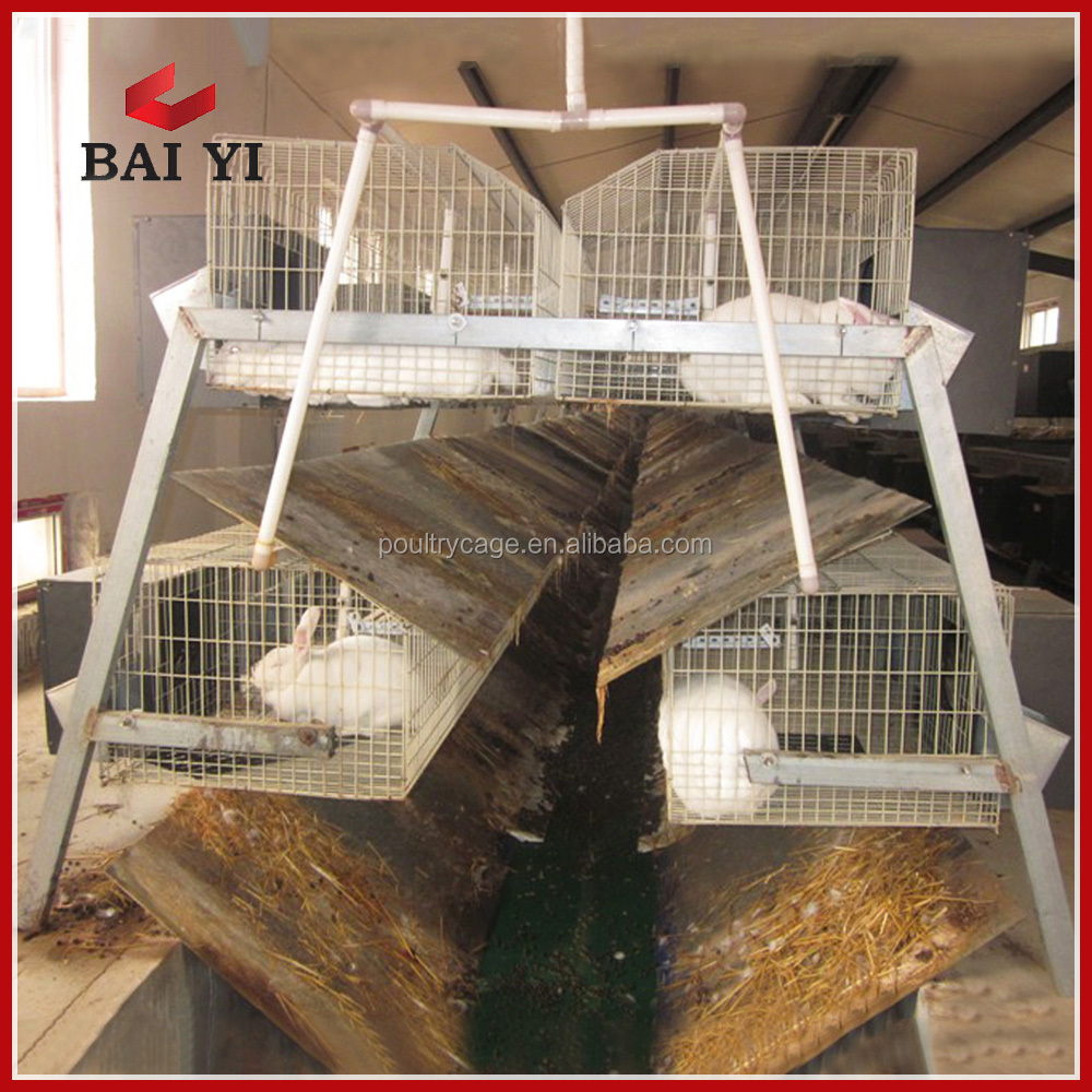 BAIYI Rabbit Cage For Sale (Female and Baby Rabbits/Commercial Rabbits)