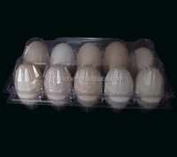 PET / PVC hatching plastic quail egg tray for sale