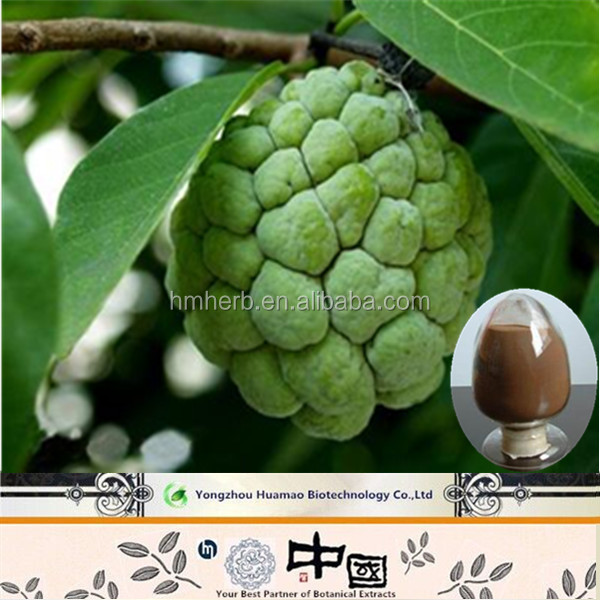 Cancer Killer Herbal Medicine Natural Organic Guanabana Extract ...