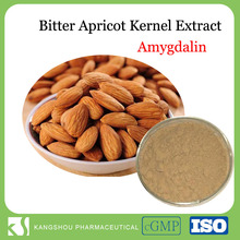 High quality Organic Bitter Apricot Kernel seeds extract Amygdalin Powder