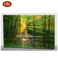 Customized Beautiful Forest Scenery With LED Light Canvas Paintings