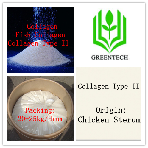 Health food addtive--Chicken Collagen Type II