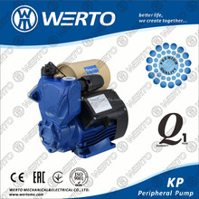 Domestic water pressure booster pump for bathroom shower