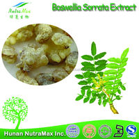 Made in China Boswelia Serrata Extract, Boswelia Serrata Extract 60%, Natural Boswelia Serrata Extract