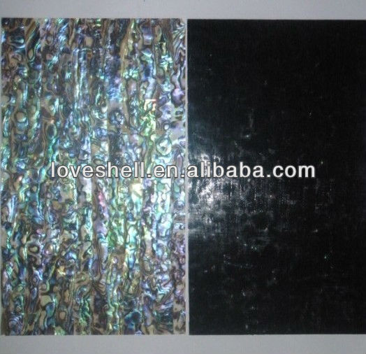 paua shell sheets with black painting backing