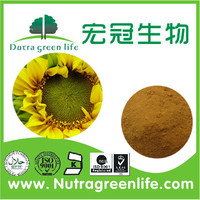 High Quality Sunflower Extract Powder/Sunflower Extract/Sunflower Seed Extract Low Price