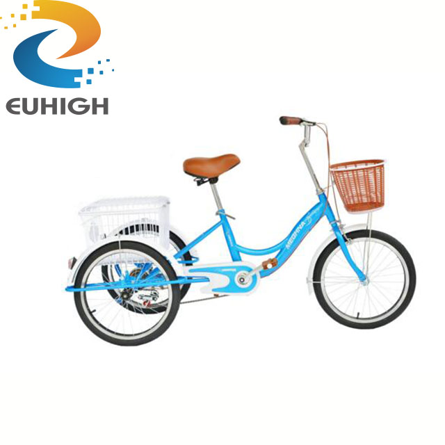3-wheel e-bike adult tricycle motorcycle