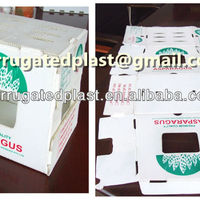 Collepsible Plastic Asparagus Packaging