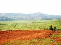 land for sale - red soil - agricultural land - near ecr road