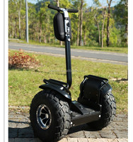 Outdoor off road electric self balancing two wheel mopeds
