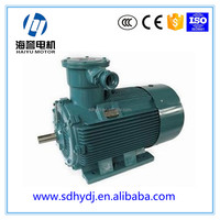 Low-carbon Environmental Protection 3 Phase AC Induction Motor